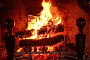 What Not To Burn In Your Fireplace Portland Oregon American Chimney