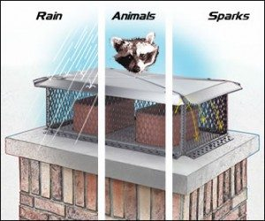 diagram-how chimney caps protect against water, animals, and sparks