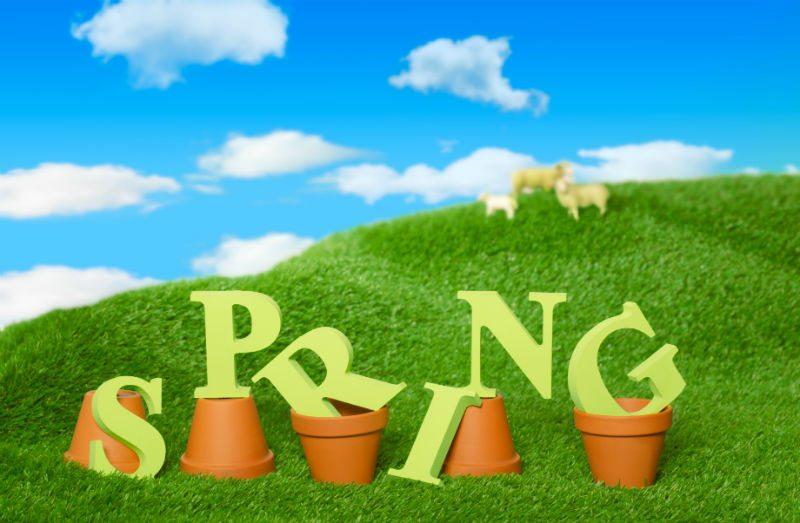 Spring Chimney Repair and Maintenance